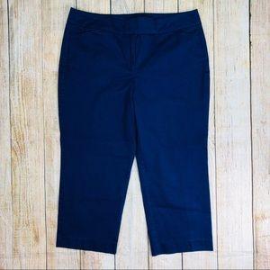 ANN TAYLOR Blue Signature Capri Pants